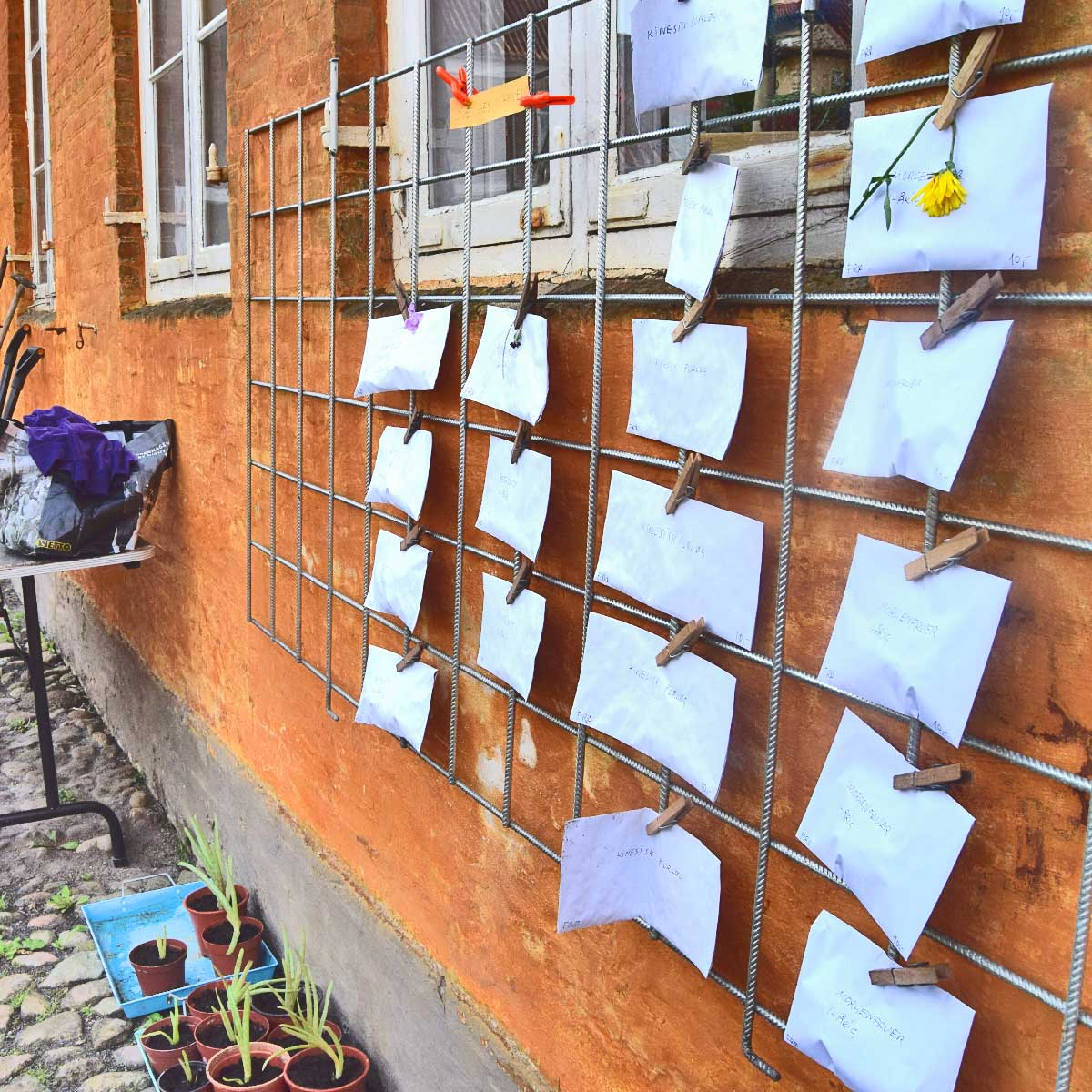 Vi har hængt kuverter med frø op på et gitter på væggen, så folk kan betjene sig selv, hvis de vil købe.