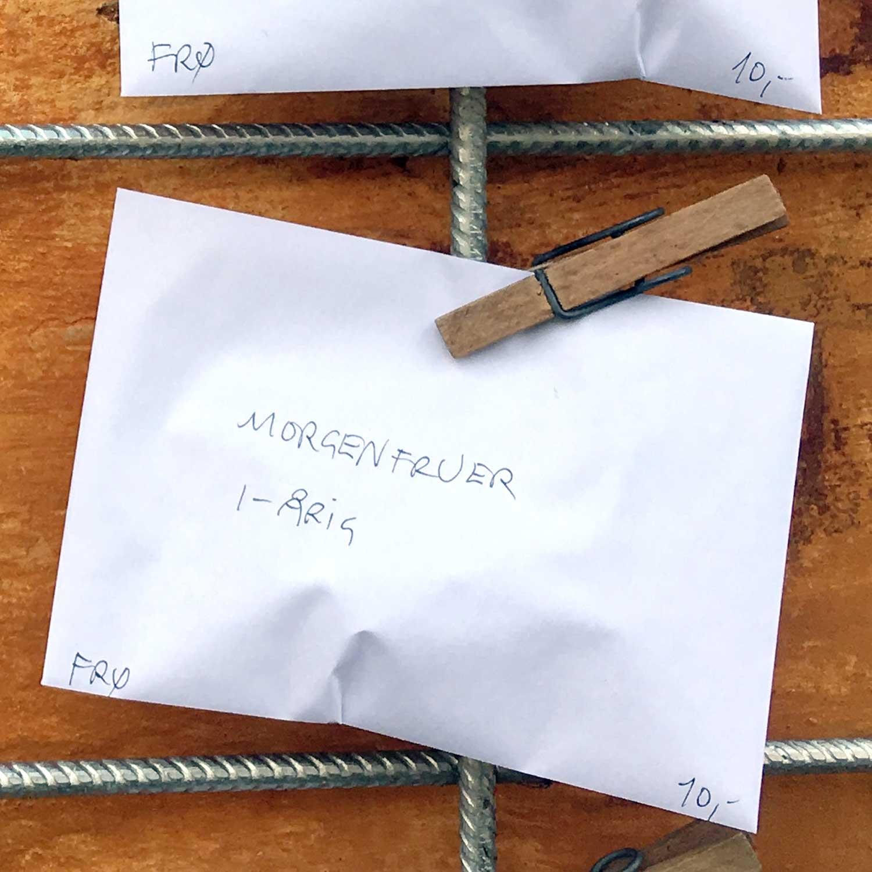 Kuvert med morgenfruefrø koster 10 kr.